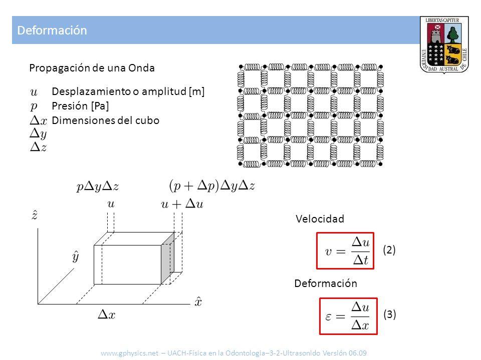 Deformación Propagación de una Onda Desplazamiento o amplitud [m]